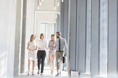 Profissionais que comunicam-se ao andar no corredor do escritório imagem de stock