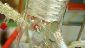 Profissional da arruela do evaporador giratório no laboratório de química orgânica para a pesquisa científica de nível elevado, i filme