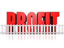 Profit Defence Business Finance Concept. 3d Render Illustration Stock Photos