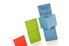 profit netto Zdjęcie Stock