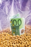 Profit from soybean cultivation Stock Photo