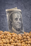 Profit from soybean cultivation Royalty Free Stock Photo