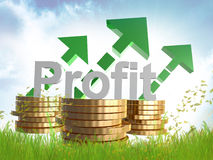 Profitable business sign symbol Royalty Free Stock Images