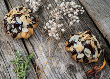 Profiteroles που βερνικώνεται στη σοκολάτα και που ψεκάζεται με τα ξέσματα ξύλων καρυδιάς Ξύλινη ανασκόπηση Κινηματογράφηση σε πρ Στοκ Εικόνα