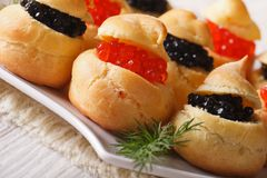 Profiteroles with red and black caviar, horizontal Stock Photography