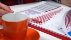 Profitto e statistiche finanziarie stock footage