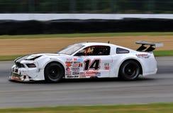 Proford mustang-raceauto op de cursus Stock Fotografie