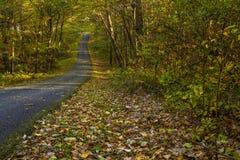 Profumo del ` s di autunno Parte migliore, New Jersey immagine stock libera da diritti