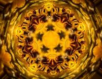 Profundamente en el caleidoscopio de la abeja del vórtice ilustración del vector