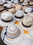 Profundidade extrema da foto do campo de chapéus de Panamá Fotos de Stock Royalty Free