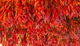 Profusion av röda Chilis Arkivfoton