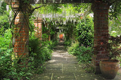 A profusion of colorful Summer Flowers. A pergola covered in Wisteria in an English garden Royalty Free Stock Image