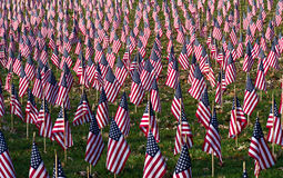 A Profusion of Flags. A public display of 7000 flags honoring our veterans stock photo