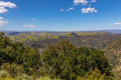 Springtime Panorama of Santa Monica Mountains showing a profusion of wild mustard. A profusion of wild mustard covers areas that had been burned in recent stock images