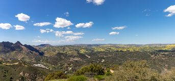 Springtime Panorama of Santa Monica Mountains showing a profusion of wild mustard. A profusion of wild mustard covers areas that had been burned in recent royalty free stock photography