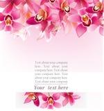 Progettazione alla moda con le orchidee Fotografia Stock Libera da Diritti