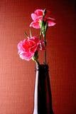 Progettazione astratta del fondo del garofano Fotografie Stock
