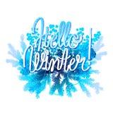 Progettazione congelata inverno Immagine Stock
