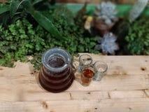 Progettazione creativa della tavola succulente & del caffè fotografia stock