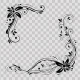Progettazione d'angolo floreale Orni i fiori neri su fondo trasparente - vector le azione Confine decorativo con fiorito Immagine Stock Libera da Diritti