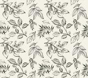 Progettazione d'annata per voi copertura personale Incisione delle foglie della molla Il tema per il menu illustrazione di stock