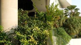 Progettazione del centro commerciale nel concetto rispettoso dell'ambiente verde Giardino pensile dell'aria aperta sui terrazzi E stock footage