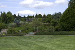 Progettazione del cortile del giardino del prato inglese Immagini Stock Libere da Diritti