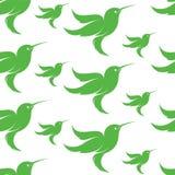 Progettazione del fondo di arte di vettore del colibrì per tessuto e la decorazione Fotografie Stock Libere da Diritti