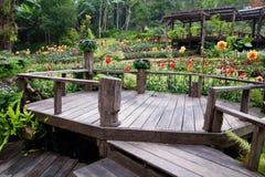 Progettazione del giardino con la miscela di legno fotografia stock libera da diritti