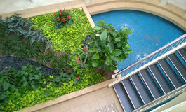 Progettazione del giardino dell'interno Fotografie Stock Libere da Diritti