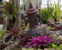 Progettazione del giardino della brocca della caraffa per l'acqua Immagine Stock