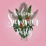 Progettazione del manifesto di stagione estiva Scrivendo e una foglia tropicale sul rosa Fotografia Stock