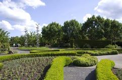 Progettazione del modello del giardino Fotografia Stock Libera da Diritti
