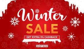 Progettazione del modello dell'insegna di vendita di inverno con i fiocchi della neve isolati sulla vendita eccellente del fondo  immagine stock