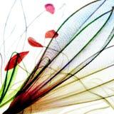 Progettazione del polline e del petalo illustrazione vettoriale
