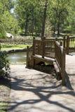 Progettazione del vicolo in parco rosa Tyler Fotografie Stock Libere da Diritti