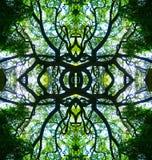 Progettazione dell'albero di Kaleidescope immagine stock