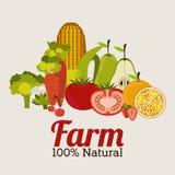 Progettazione dell'azienda agricola illustrazione vettoriale