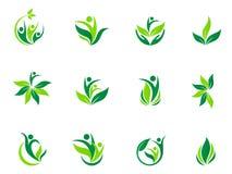 Progettazione dell'icona di vettore di simbolo del sole della foglia della natura di sanità di logo di benessere della gente Immagini Stock