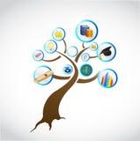 Progettazione dell'illustrazione di concetto dell'albero di istruzione Immagine Stock
