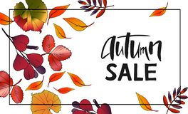 Progettazione dell'insegna Autumn Sale Lettering con le foglie illustrazione di stock