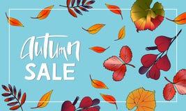Progettazione dell'insegna Autumn Sale Lettering con le foglie illustrazione vettoriale