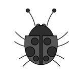 progettazione dell'insetto illustrazione di stock