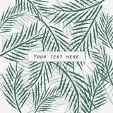 Progettazione della cartolina d'auguri sul fondo delle foglie di palma Fotografie Stock
