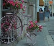 Progettazione della città: canestro del fiore sotto forma di bicicletta antica Fotografie Stock Libere da Diritti