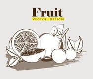 Progettazione della frutta Immagine Stock