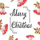 Progettazione di carta di Buon Natale con i rami della sorba dell'acquerello illustrazione di stock