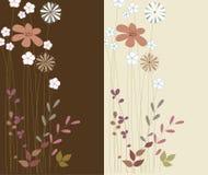 Progettazione di carte floreale Fotografia Stock