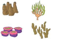 Progettazione di corallo disegnata a mano Immagini Stock Libere da Diritti