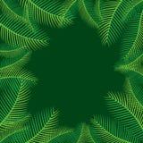 Progettazione di foglia di palma del fondo dell'albero Fotografia Stock